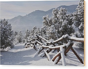 Winter Trail Beckons Wood Print by Diane Alexander