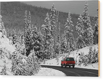 Wood Print featuring the photograph Winter Traveler by Geraldine Alexander