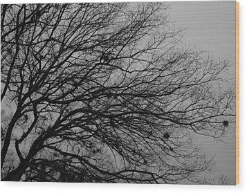 Winter Tree Wood Print by Kimberly Oegerle