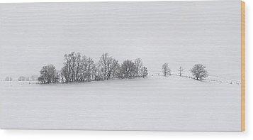 Winter Tree Line In Indiana Wood Print by Julie Dant