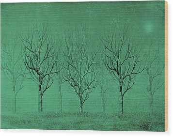 Winter Trees In The Mist Wood Print by David Dehner