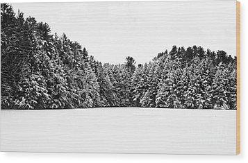Winter Trees Mink Brook Hanover Nh Wood Print by Edward Fielding