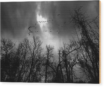 Winter Trees Moving Sky Wood Print by Bob Orsillo