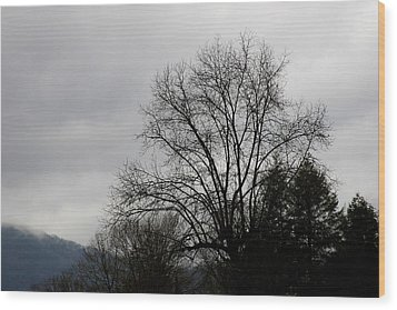 Winter Trees Number Four Wood Print