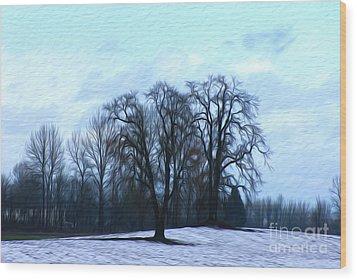 Winter Trees Wood Print by Nur Roy