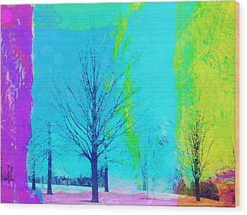 Winter Trees Wood Print by Susan Stone