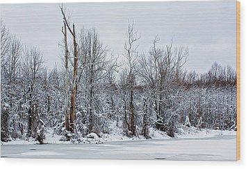 Winter Trees - Sydney Tran Wood Print by Sydney Tran