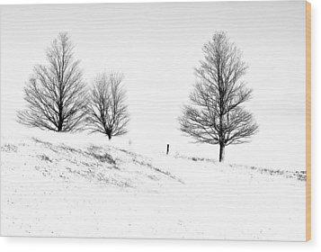 Winter Trinity Infrared Wood Print by Steve Harrington