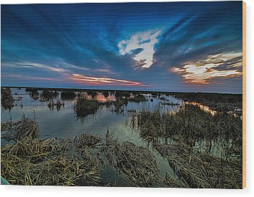 Winter Twilight At Anahuac Wildlife Refuge  Wood Print