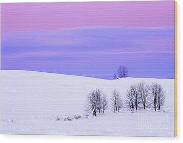 Winter Twilight Landscape Wood Print