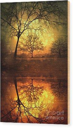 Winter Warmth Wood Print by Tara Turner