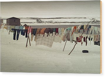 Winter Wash Day Labrador Wood Print by Douglas Pike