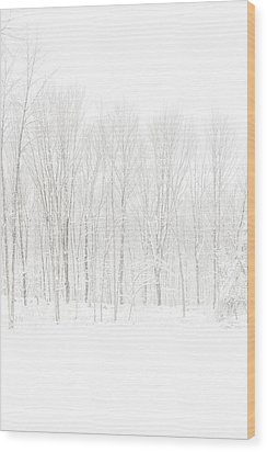 Winter White Out Wood Print by Karol Livote