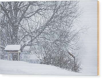 Wood Print featuring the photograph Winter White Out by Robert Clifford