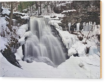 Winter Wilds At Erie Falls Wood Print