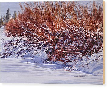 Winter Willows Wood Print by Sharon Freeman