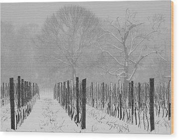 Winter Wine Wood Print