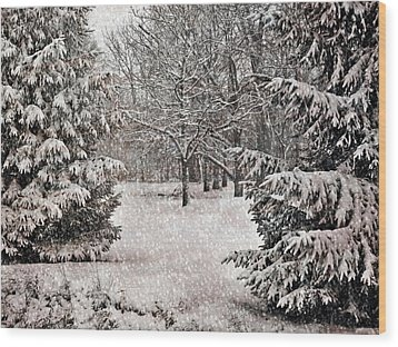 Winter Wonder 7  Wood Print by Maria Huntley