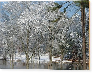 Wood Print featuring the photograph Winter Wonder Land Of Mine by Tanya Tanski