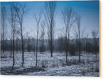 Wood Print featuring the photograph Winter Wonderland by Bianca Nadeau