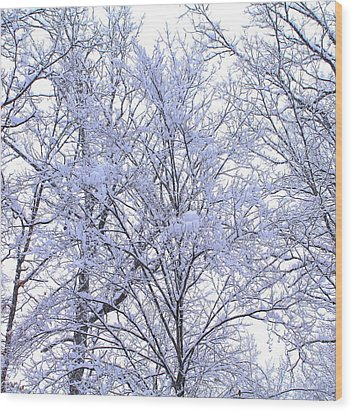 Wood Print featuring the photograph Winter Wonderland by Candice Trimble