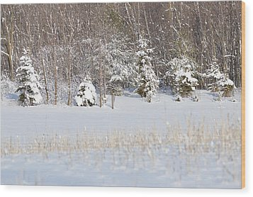 Wood Print featuring the photograph Winter Wonderland by Dacia Doroff