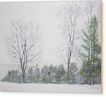 Winter Wonderland Usa Wood Print