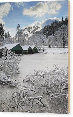Winter Wonderland Wood Print by Grant Glendinning