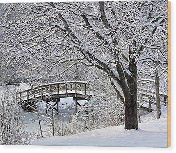 Winter Wonderland Wood Print by Janice Drew