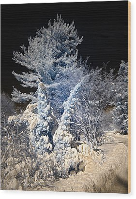 Wood Print featuring the photograph Winter Wonderland by Steve Zimic