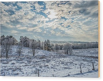 Winter Wonderland Wood Print by Tim Sullivan