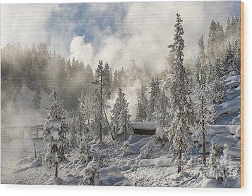 Winter Wonderland - Yellowstone National Park Wood Print by Sandra Bronstein