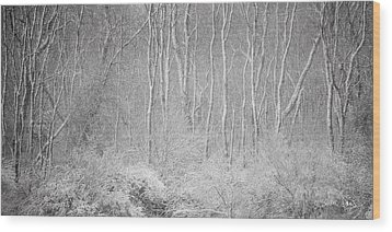 Winter Wood 2013 Wood Print
