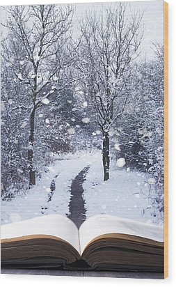 Winter Woodland Book Wood Print by Amanda Elwell