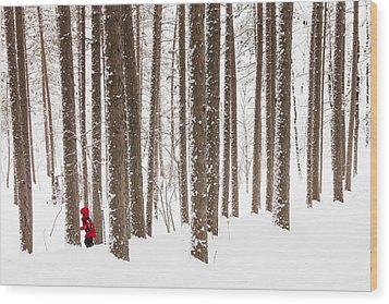 Winter Frolic Wood Print by Mary Amerman