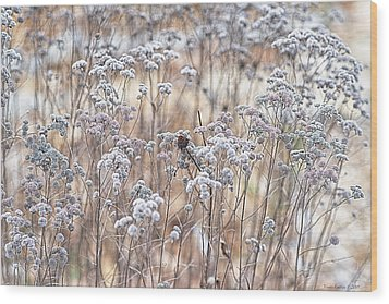 Wood Print featuring the photograph Winter by Yvonne Emerson AKA RavenSoul