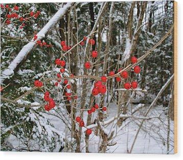 Winterberry Wood Print