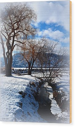 Wintercreek 2/8/2014  Wood Print