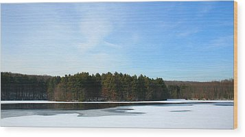 Wintergreen Winterfrost Wood Print by Stephen Melcher