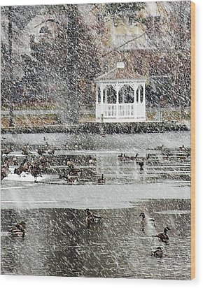 Wintering Geese On Silver Lake Wood Print