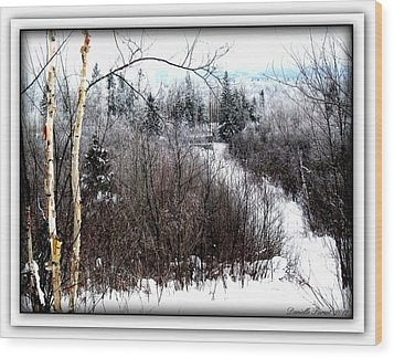 Winterlude Wood Print by Danielle  Parent