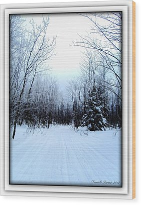 Wood Print featuring the photograph Winterlude In Abitibi Temiscamingue Quebec  by Danielle  Parent