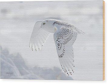 Winters Angel Wood Print