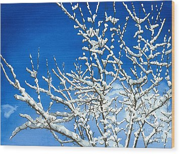 Winter's Artistry Wood Print by Barbara Jewell