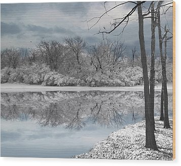 Winters Delight 6 - Limited Edition Wood Print