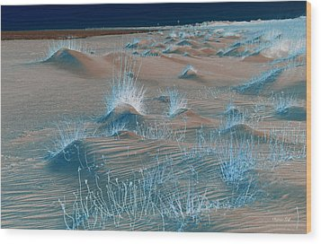 Winters Dunes IIi Wood Print by Suzanne Gaff