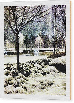 Winters Light Wood Print by Andrew Allsopp