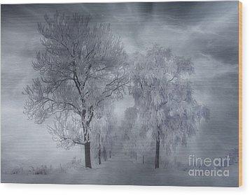 Winter's Magic Wood Print by Veikko Suikkanen