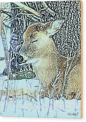 Winter's Nap Wood Print by Torie Tiffany