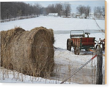 Wood Print featuring the photograph Winter's Rest by Linda Mishler